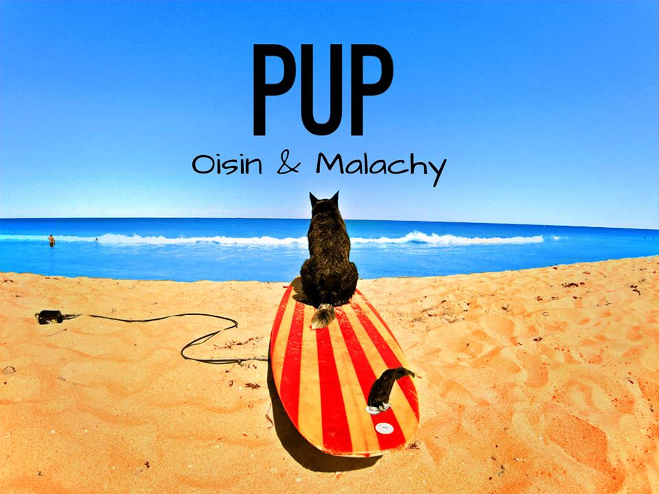 Oisin and Malachy – Pup