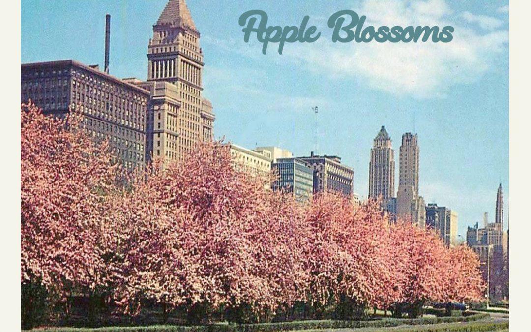 Nah… – Apple Blossoms