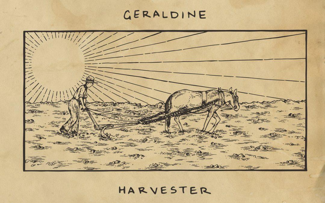 Geraldine – Muscadine