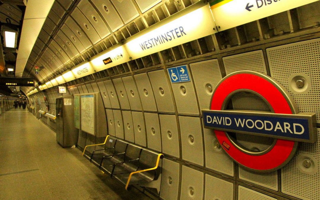 David Woodard – I Used to Be Cool and We're Not Coming Back