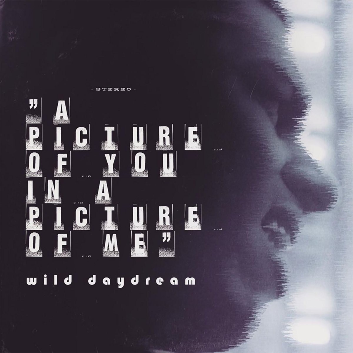 Wild Daydream – A Picture of You in a Picture of Me
